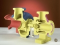 3D Color printed in one model - great for cutaway