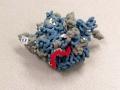 Biomolecular 3D Printed model